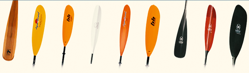 types-of-paddle-image