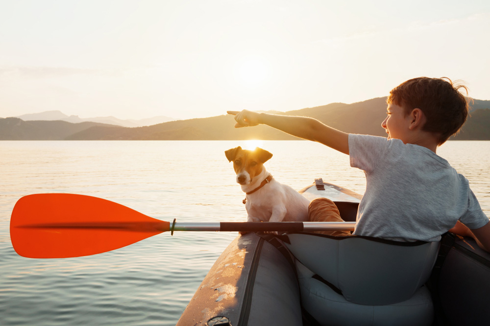 Top 10 Best Kayaks For Dogs (2019) Reviews & Buyer's Guide