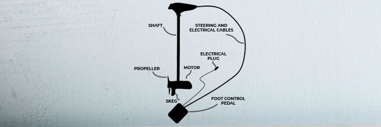 how-trolling-motors-work: trolling motor parts